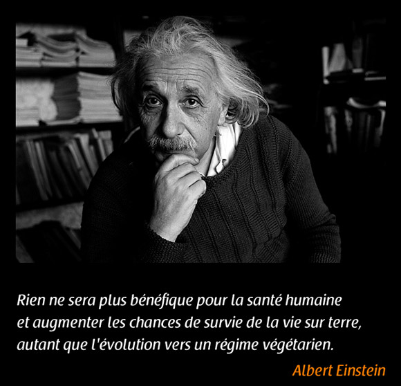 Illustration de la citation d'Albert Einstein